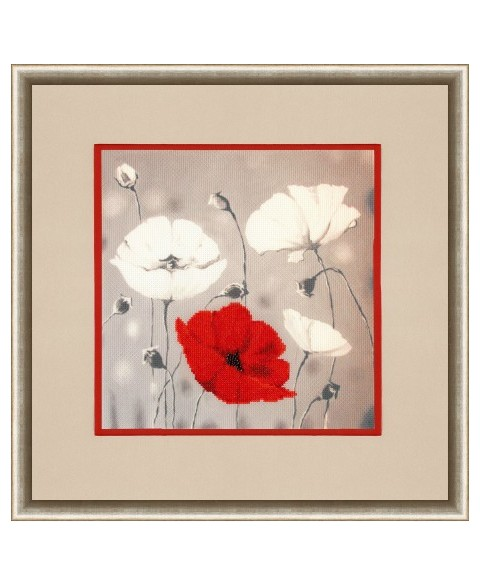 Red Poppies S/KN001