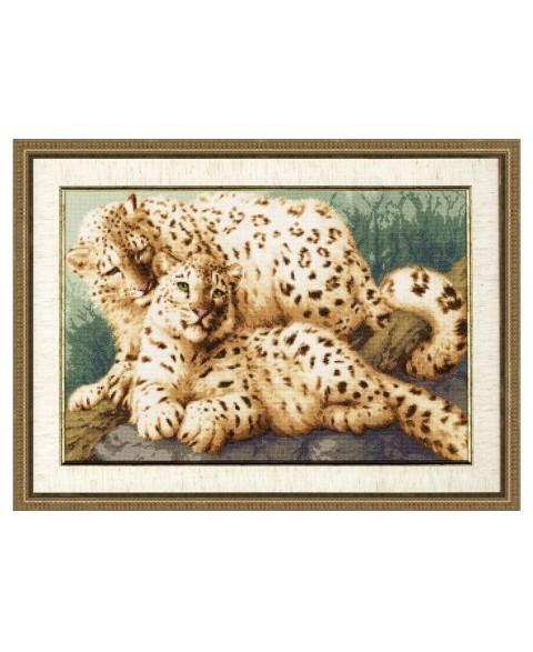 Snow Leopards S/DZH026