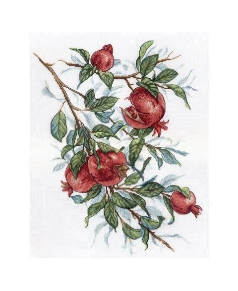 Pomegranate Tree SNV-535
