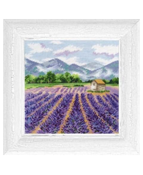 Provence S1156