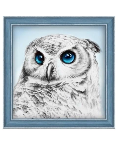 Owl Sight AZ-1549