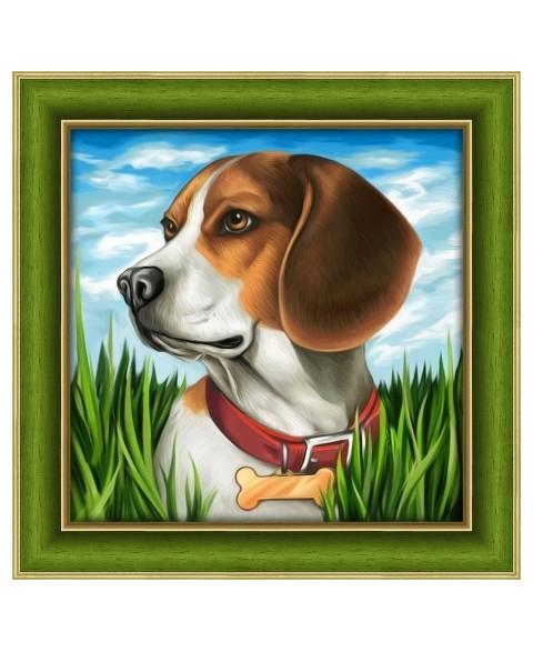 Beagle AZ-1608