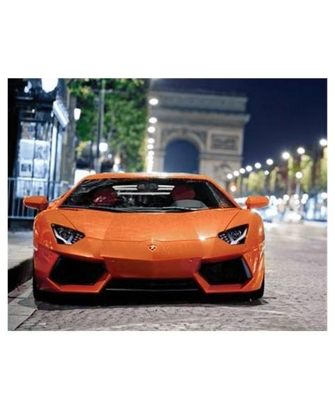 Sports Car WD255